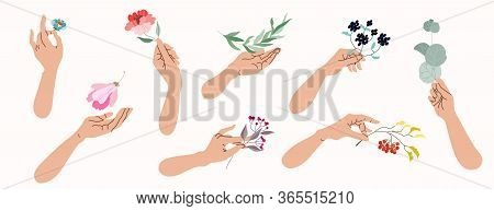 Hands Holding Flowers And Tree Branches. Collection Of Isolated Vector Illustrations Of Female Hands