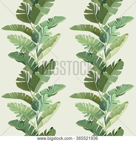 Rainforest Decorative Wallpaper Ornament With Green Tropical Banana Palm Leaves And Branches. Seamle