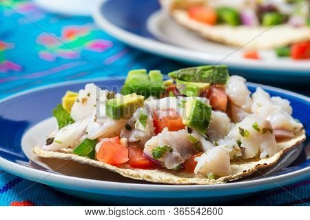 Mexican Fish Ceviche With Crispy Fried Tortillas