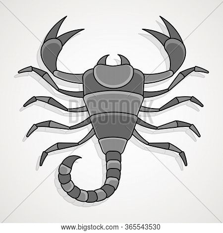 Scorpion Background Can Be Used As A Print For Tshirts, Bags, Cards And Posters.