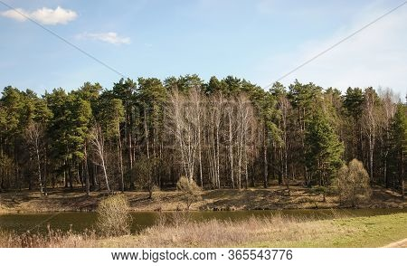 Forest And Lake. Beautiful Landscape Of Central Russia. Moscow Region