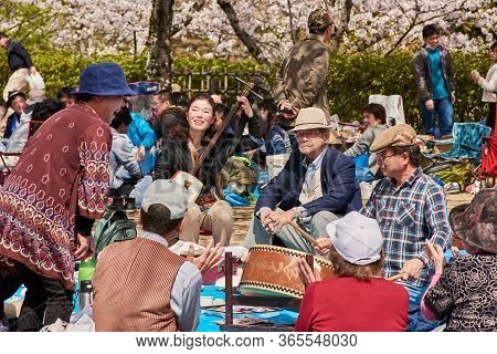 Himeji / Japan - March 31, 2018: People Picnicking And Singing Under Blooming Cherry Blossom Trees D