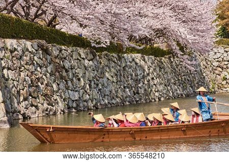 People In A Tourist Boat Admiring The Cherry Blossom Trees In Himeji, Japan