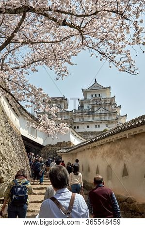 Himeji / Japan - March 31, 2018: Tourists Visit The Himeji Castle During The Cherry Blossom Sakura S