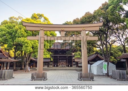 Meiji Jingu Shinto Shrine In Tokyo, Japan