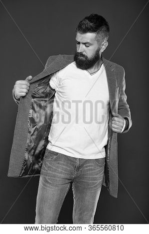 Style Adapted To Business. Hipster Put On Casual Style Jacket. Bearded Man Wear Trendy Mustache And