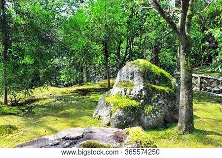 Big old stone with moss in ornamental garden, Rokuon-ji complex (Deer Garden Temple), Kyoto, Japan. UNESCO world heritage site