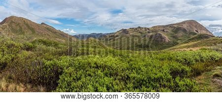 A Panoramic View Of The  Spring Landscape In Denali National Park In Alaska.