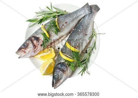 Fresh Gutted Fish Seabass And Ingredients For Cooking, Lemon, Pepper And Rosemary In A Plate Isolate