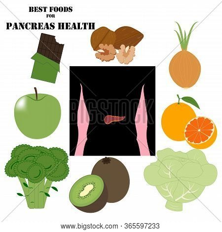 Best Foods For Pancreas Health Illustration On The White Background. Vector Illustration