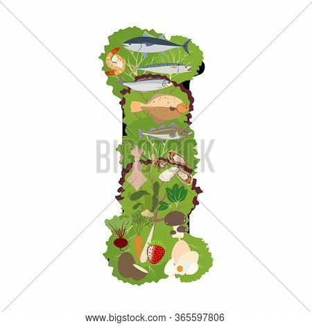 Iodine Mineral Rich Food Illustration On The White Background. Vector Illustration