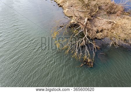 Grassy Shore Of A Small Island On A River. Dried Tree Was Inclined Over Water. Drone Photo