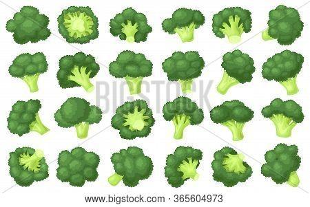 Broccoli Crumbs Vector Cartoon Set Icon. Vector Illustration Brocolli Cabbage On White Background. I
