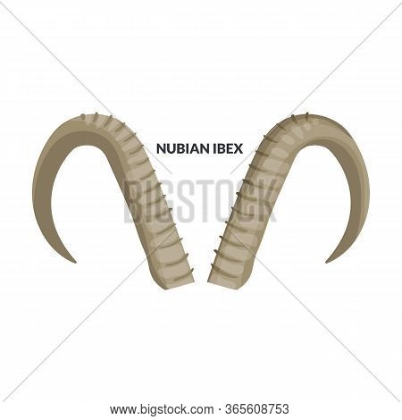 Horn Nubian Ibex Vector Icon.cartoon Vector Icon Isolated On White Background Horn Nubian Ibex.