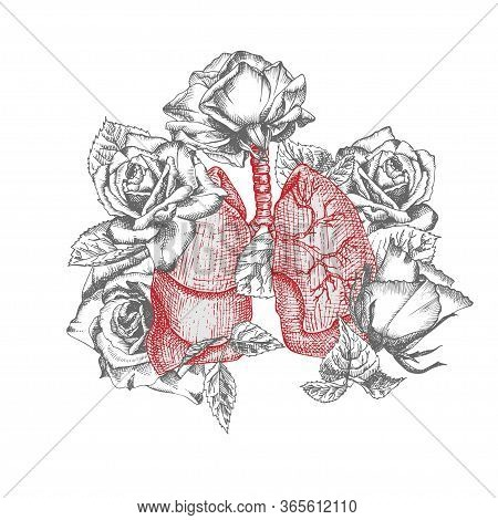 Lungs With Bouquet Roses Realistic Hand-drawn Icon Of Human Internal Organ And Flower Frame. Engravi