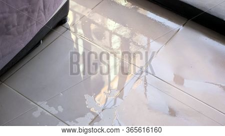 Trembling Water Puddle After Pipe Burst Covers White Tile Near Furniture In Room Reflecting Window A