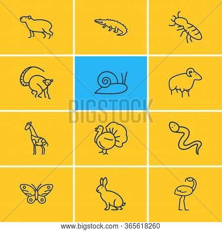 Vector Illustration Of 12 Animals Icons Line Style. Editable Set Of Thermit, Lemur, Butterfly And Ot