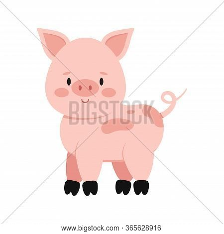 Cute Pink Pig With Curly Tail Isolated On White Background. Funny Farm And Domestic Little Pig Icon.
