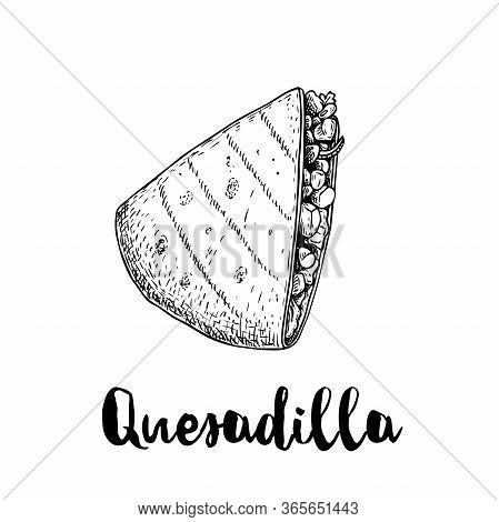 Fresh Quesadilla. Hand Drawn Sketch Style Illustration. Mexican Traditional Fast Food. Vector Drawin