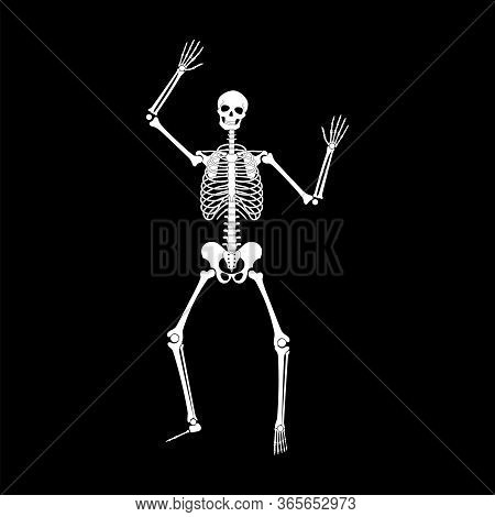 Happy Dancing Skeleton On Halloween. Dance And Gymnastics Skeleton Pose. Vector Flat Cartoon Illustr