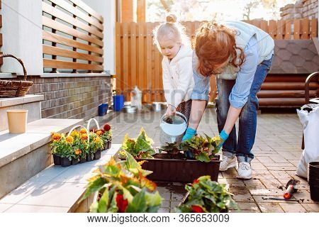 Grandmother With Her Little Granddaughter Gardening In A Backyard. Different Generation. Grandmawith