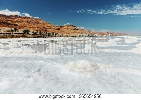 Dead sea salty shore. Wild nature. Tropical landscape. Summertime.