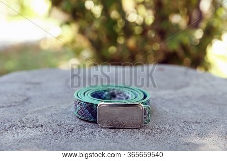 Womens Gray Belt Is On The Green Background Nature . Belt On The Stone . Womens Green Waist Belt Is
