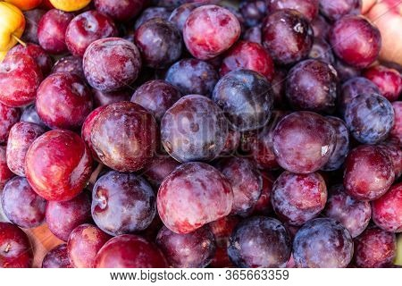 Food Fruit Plums. Texture Background Of Fresh Blue Plums.