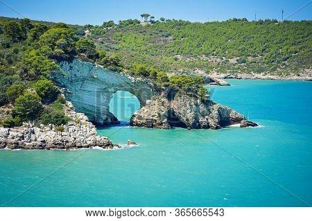 Apulia Coast: Panoramic View Of San Felice Bay With Architello (little Arch) Of San Felice. Gargano