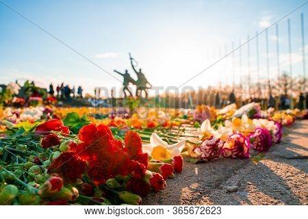 Riga, Latvia. May 9, 2020. Close Up View Of The Flowers Near Victory Park Monument In Riga, Latvia.