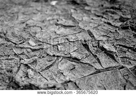 Cracked Natural Soil Background. Dry Soil In Global Warming
