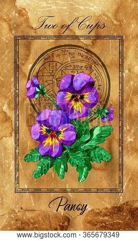 Two Of Cups. Minor Arcana Tarot Card With Pansy And Magic Seal. Full Vintage Deck Enchanted Flowers.