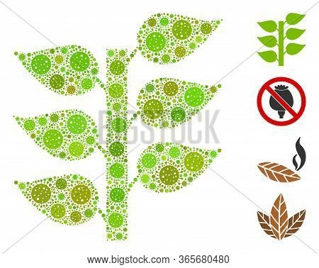 Mosaic Flora Plant Composed Of Coronavirus Icons In Random Sizes And Color Hues. Vector Infection Ic