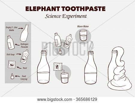 Vector Illustration Of A Elephant's Toothpaste Experiment