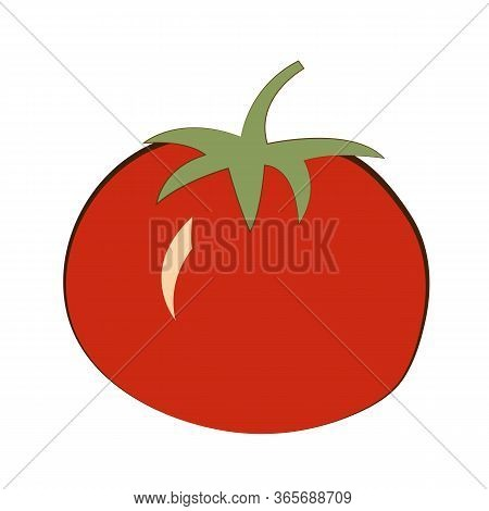 Image Of Tomato Isolated On A White Background. Vegetables For The Kitchen From The Garden. Healthy