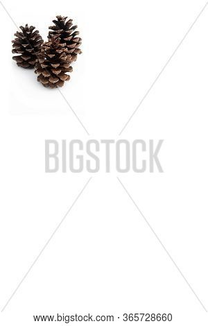 Three Pinecones Poster Mocksup With Copy Space For Custom Text Or Graphics On A White Background In
