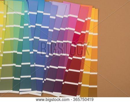 Palette Of Colors. Vivid Shades. Beige Background.