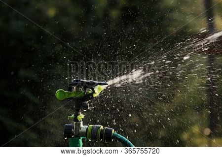 Widely Splashed Water From The Device. Sprinkler In Action.