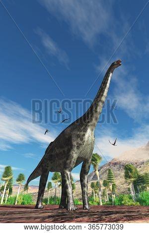 Cetiosaurus Dinosaur 3d Illustration - Cetiosaurus Herbivorous Dinosaur Is Surrounded By Dorygnathus