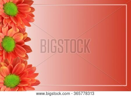 Greeting Card Background Design With Colour Gradient Orange Sunflowers And Copy Space, Trendy Border