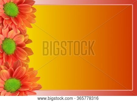 Greeting Card Background Design With Orange Colour Gradient Sunflowers And Copy Space, Trendy Summer