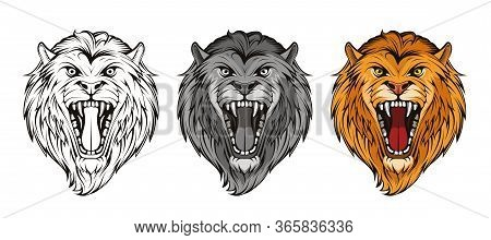 Set Of Head Angry, Roar Lion. King Lion. Predator Animal. Lion Mascot Color Logo. Animal Tattoo. Ang
