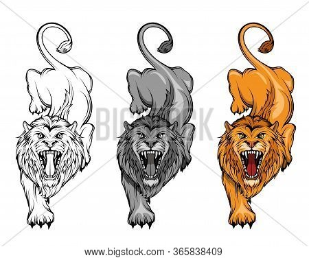Set Of Angry, Roar Lion. Stands King Lion. Predator Animal. Lion Mascot Color Logo. Animal Tattoo. A