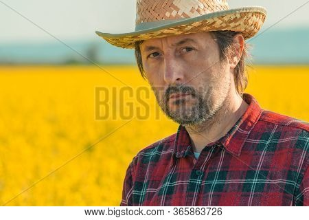 Oilseed Rape Farmer Posing In Field, Portrait Of Confident Male Agronomist Looking At Camera
