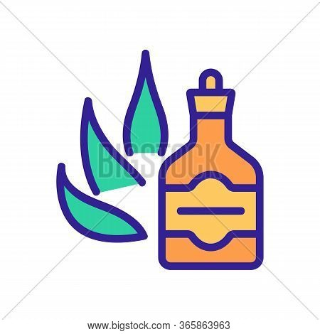 Agave Tincture Icon Vector. Agave Tincture Sign. Color Symbol Illustration