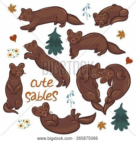 Set Of Cute Sables Isolated On A White Background. Vector Image.