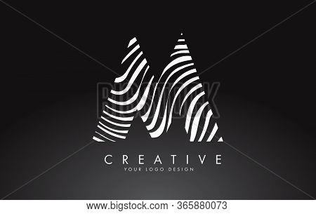 M Letter Logo Design With Fingerprint, Black And White Wood Or Zebra Texture On A Black Background.