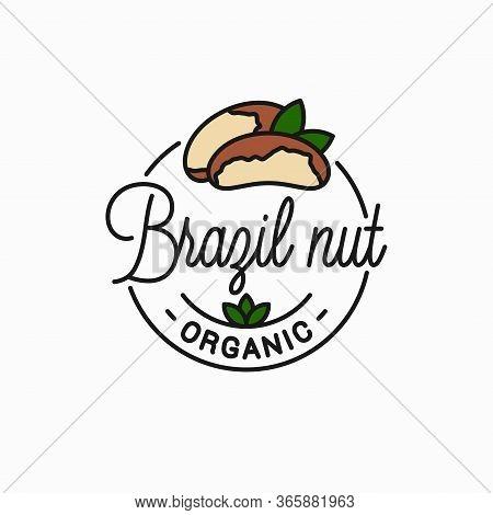 Brazil Nut Logo. Round Linear Of Peeled Brazil Nut