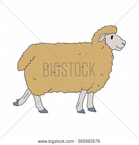 Cute French Farmhouse Sheep Vector Clipart. Hand Drawn Shabby Chic Style Country Farm Kitchen. Illus