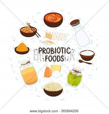 Vector Probiotic Foods. Best Sources Of Probiotics. Beneficial Bacteria Improve Health. Design Is Fo